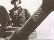 командир танка тигр